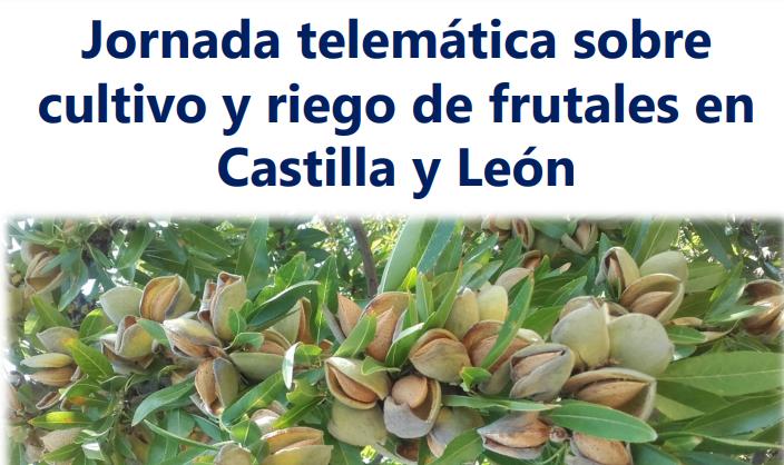 Jornada telemática sobre cultivo y riego de frutales en Castilla y León