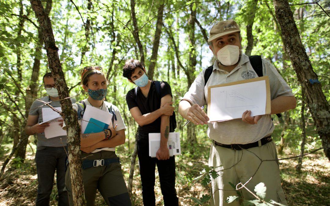 Estudiantes internacionales se forman en gestión forestal sostenible en el Campus de Palencia